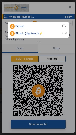 Lightning Payment Page